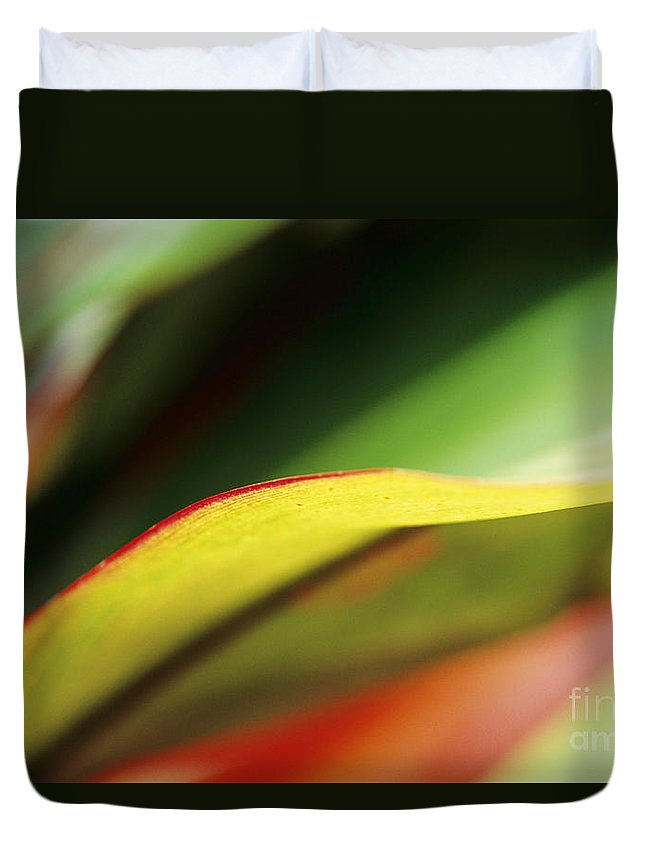 Abstract Duvet Cover featuring the photograph Ti-leaf Abstract by William Waterfall - Printscapes