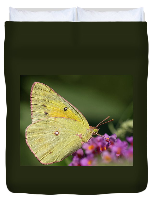Butterfly Duvet Cover featuring the photograph Tickled Pink by Shelley Neff