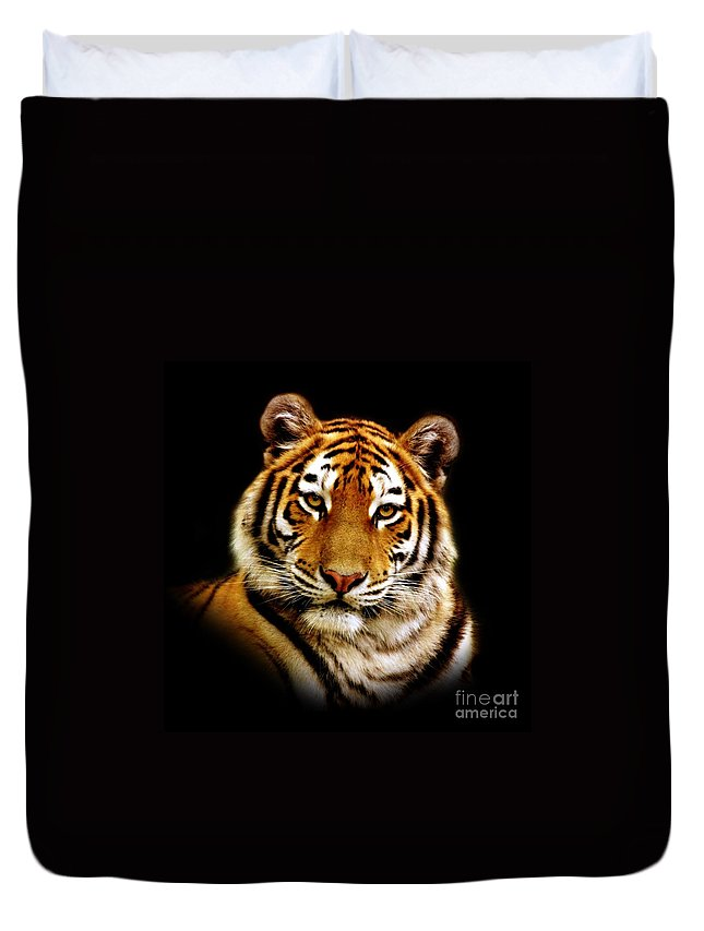 Wildlife Duvet Cover featuring the photograph Tiger by Jacky Gerritsen