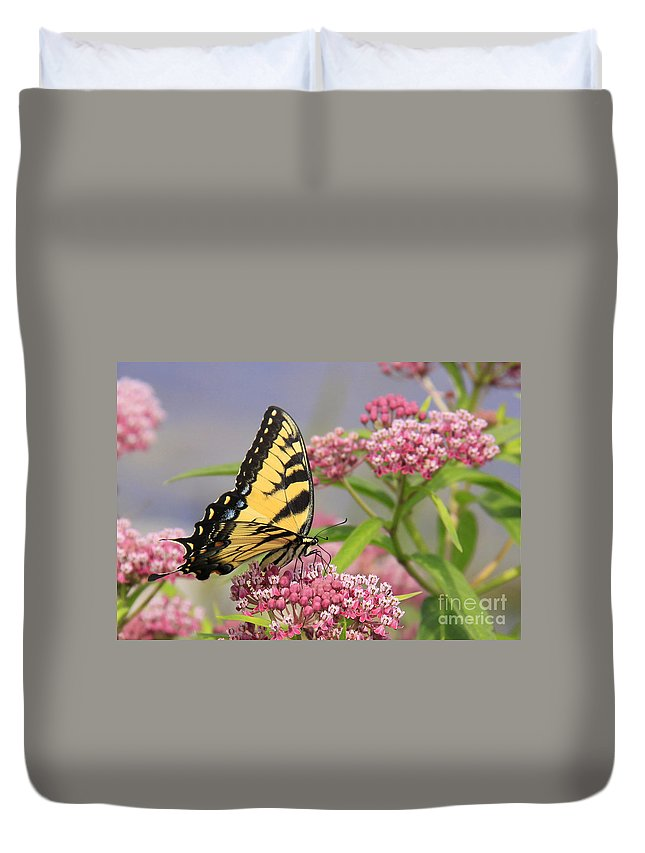 Insects Duvet Cover featuring the photograph Tiger Swallowtail by Sharon Korte