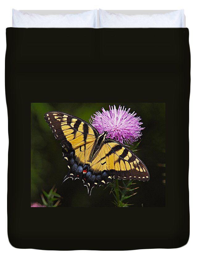 Butterfly Duvet Cover featuring the photograph Tiger Swallowtail by William Jobes
