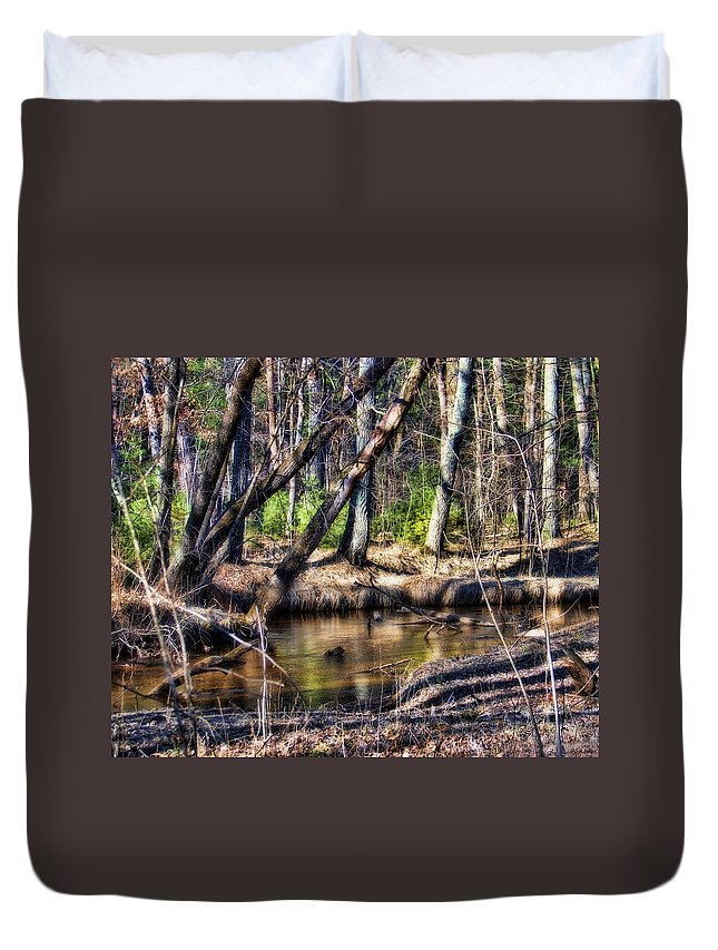 Landscape Duvet Cover featuring the photograph Time Stood Still by Lauren Radke