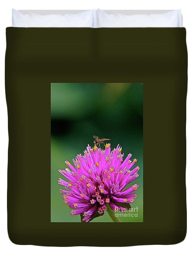 Hoverfly Duvet Cover featuring the photograph Tiny Aviator by Byron Varvarigos