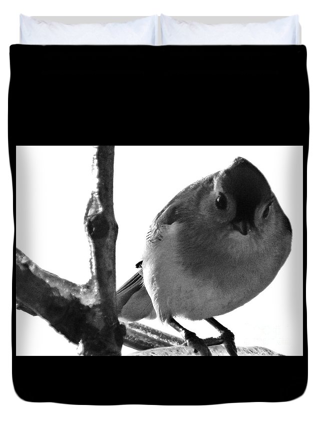 Titmouse Duvet Cover featuring the photograph Titmouse Eyes by Emily Michaud