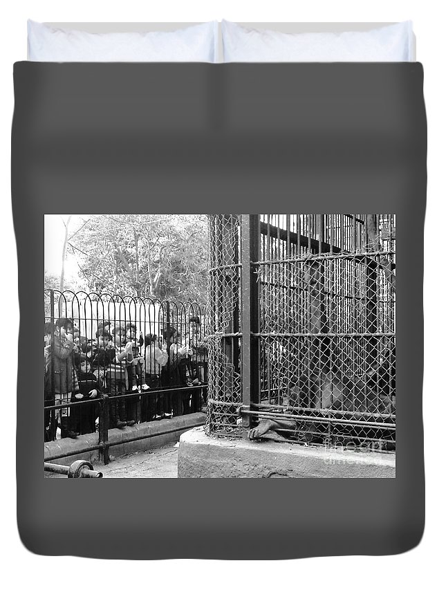 Zoo Monkey Beg For Food Cage Kids Black And White Duvet Cover featuring the photograph to Beg by Mina Milad