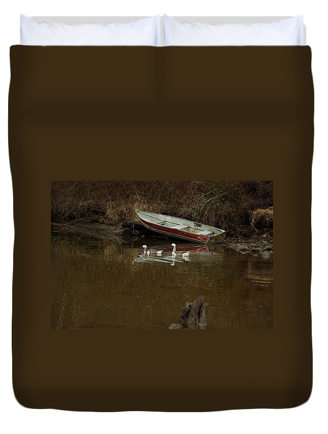 Geese Duvet Cover featuring the photograph To Float Or Not To Float by Cindy Johnston