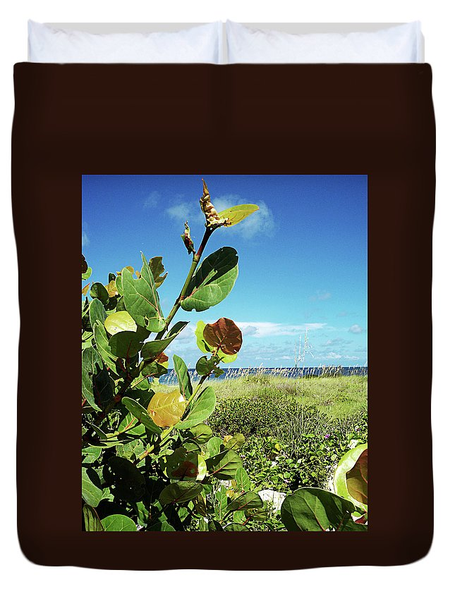 Florida Duvet Cover featuring the photograph To The Sky GP by Chris Andruskiewicz