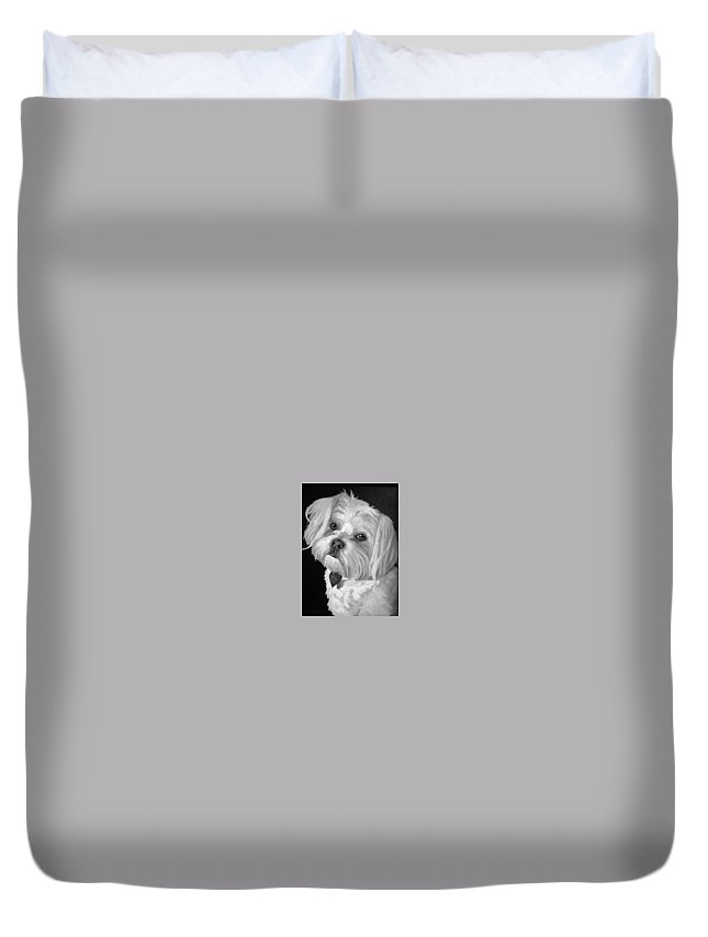 Dogs Duvet Cover featuring the painting Toby by Portraits By NC