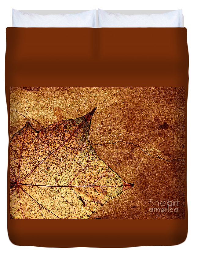Autumn Duvet Cover featuring the photograph Today Everything Changes by Dana DiPasquale