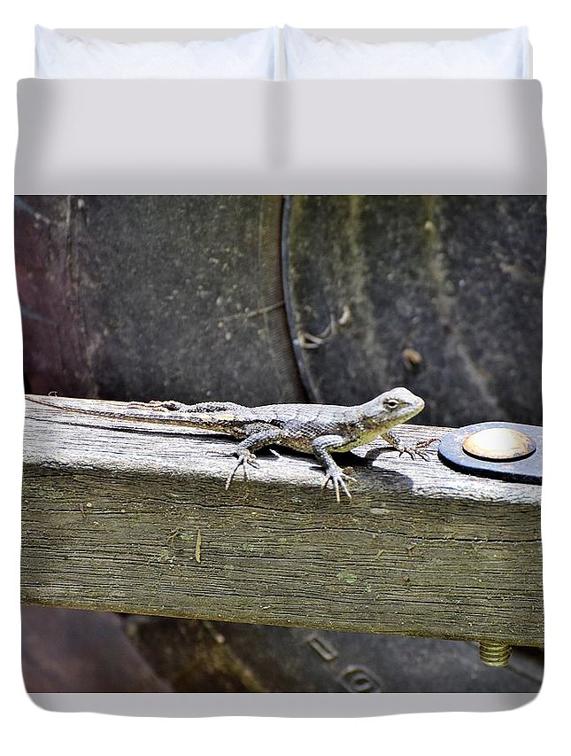 Insects Duvet Cover featuring the photograph Todays Art 1067 by Lawrence Hess