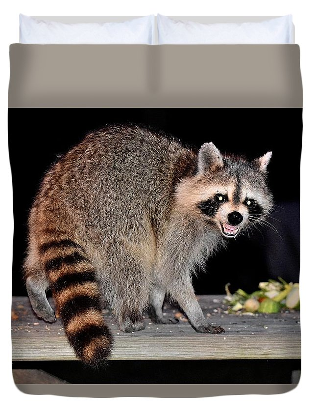 Animal Duvet Cover featuring the photograph Todays Art 1071 by Lawrence Hess