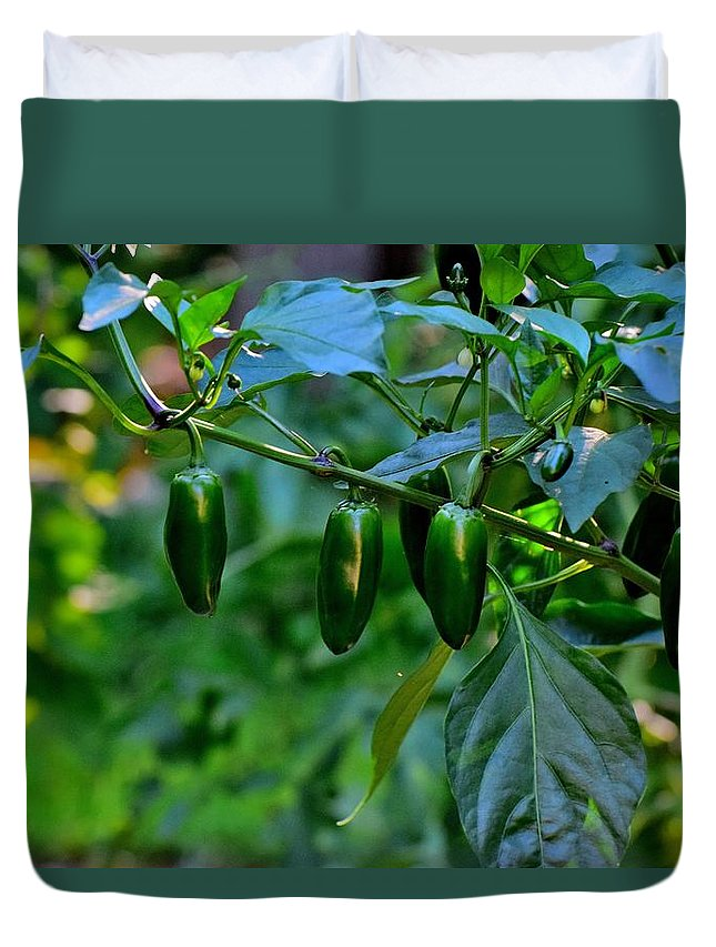 Gardens Duvet Cover featuring the photograph Todays Art 1089 by Lawrence Hess