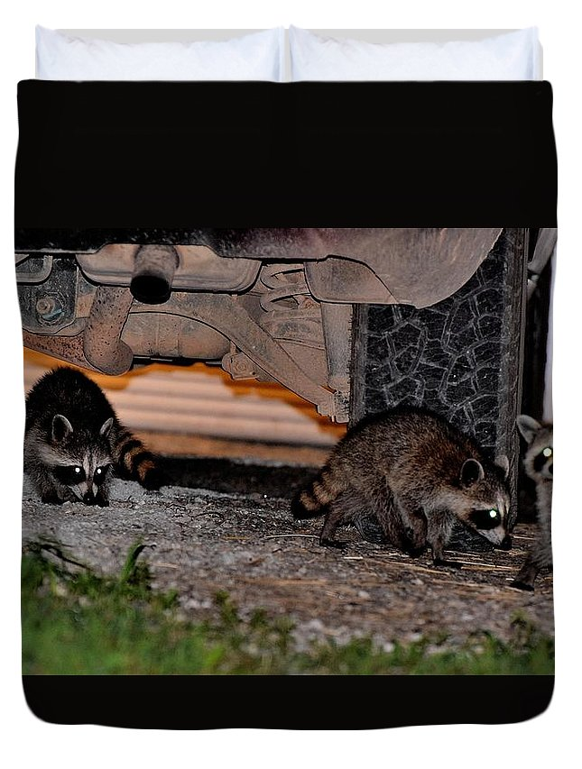 Animals Duvet Cover featuring the photograph Todays Art 1100 by Lawrence Hess