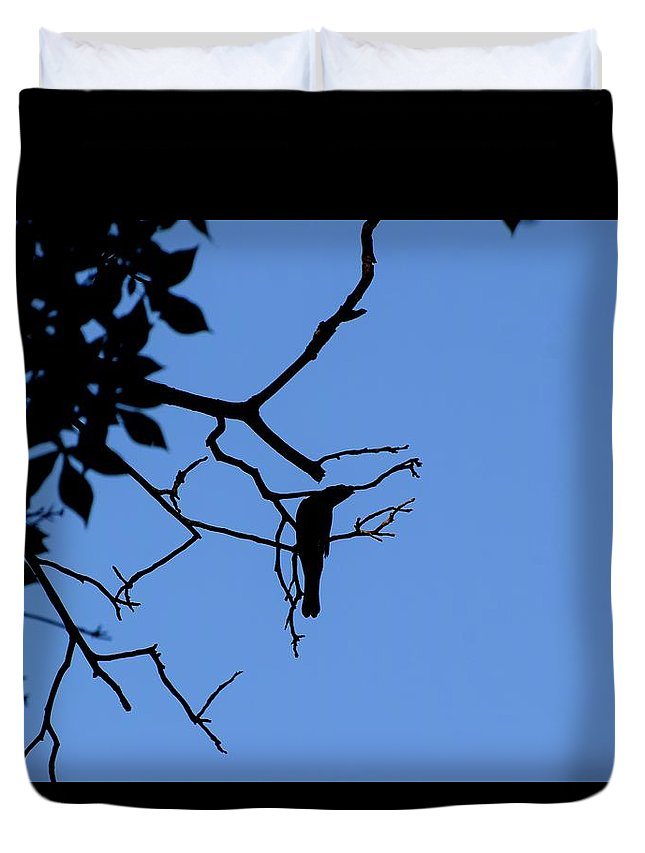 Bird Duvet Cover featuring the photograph Todays Art 1237 by Lawrence Hess