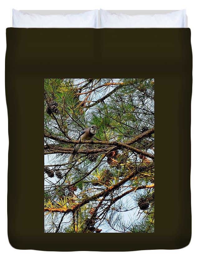 Bird Duvet Cover featuring the photograph Todays Art 1243 by Lawrence Hess
