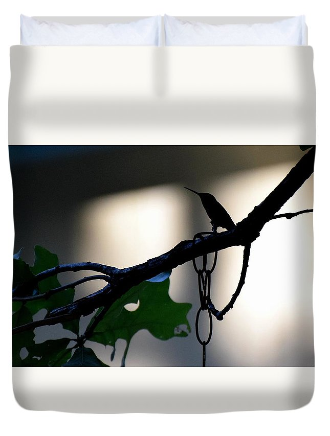Bird Duvet Cover featuring the photograph Todays Art 1244 by Lawrence Hess