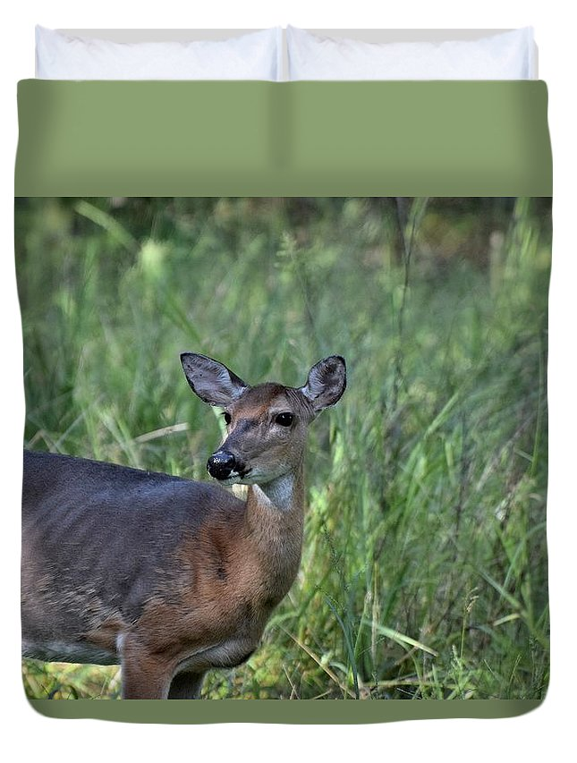 Animal Duvet Cover featuring the photograph Todays Art 1991 by Lawrence Hess