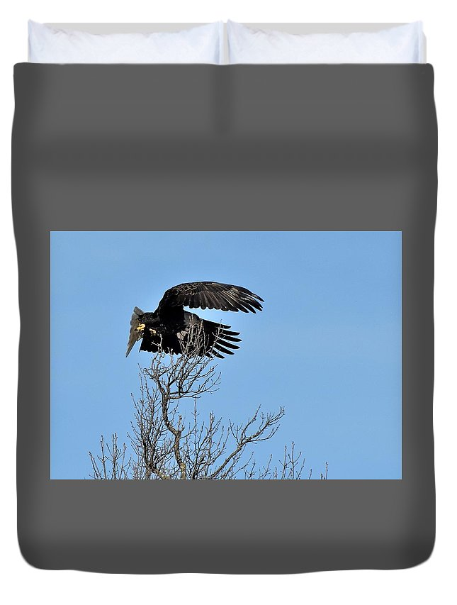 Bird Duvet Cover featuring the photograph Todays Art 2003 by Lawrence Hess