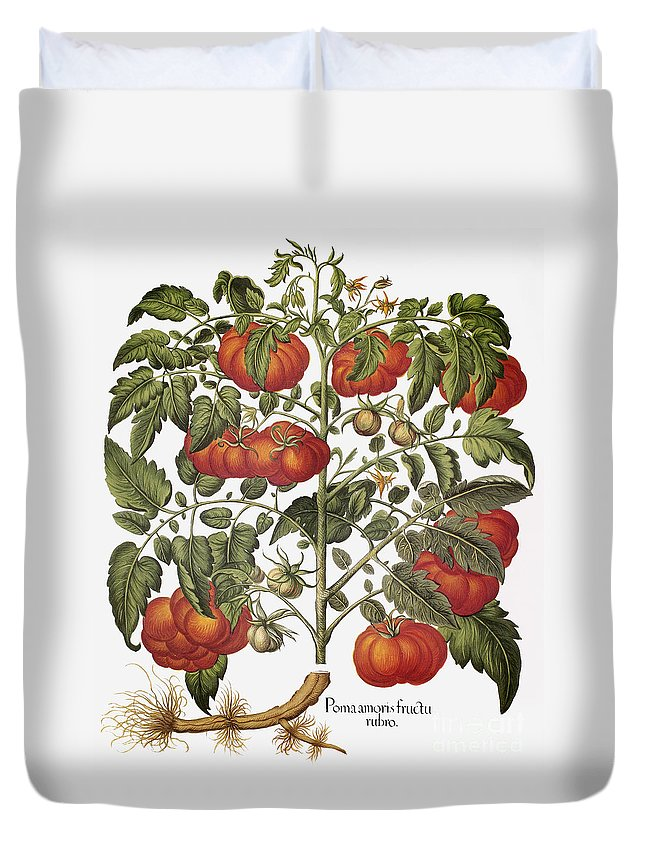 1613 Duvet Cover featuring the photograph Tomato, 1613 by Granger