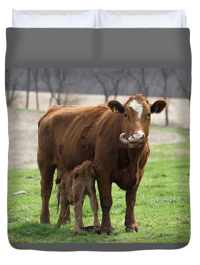 Tongue Duvet Cover featuring the photograph Tongue by Brooke Bowdren