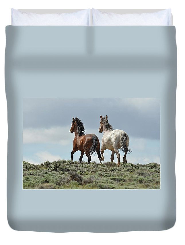 Wild Horses Duvet Cover featuring the photograph Too Beautiful by Frank Madia