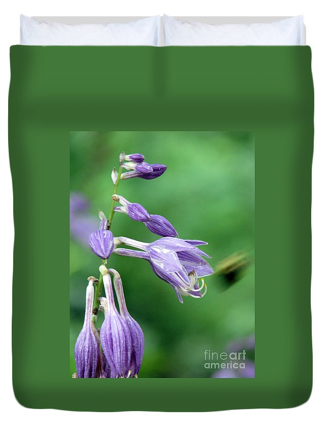 Bees Duvet Cover featuring the photograph Too Busy To Notice by Amanda Barcon