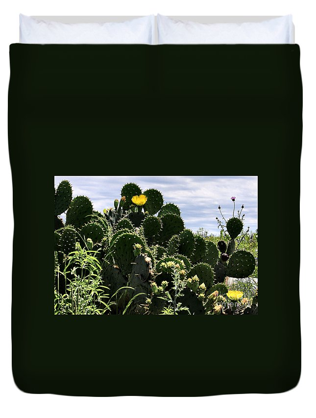 Cactus Duvet Cover featuring the photograph Too Many Good Points by Maris Salmins