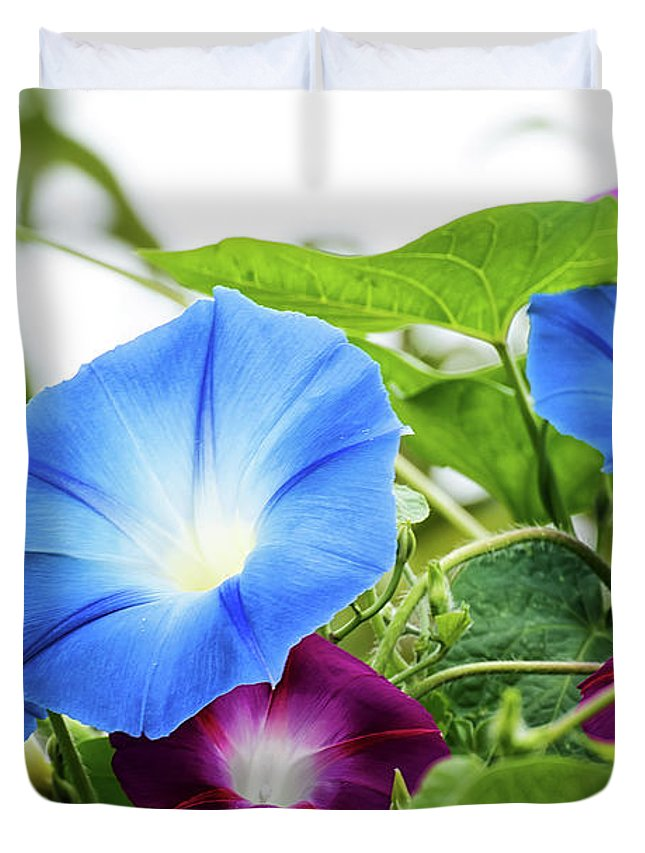 Duvet Cover featuring the photograph Top Of The Morning Glories by Camille Lopez