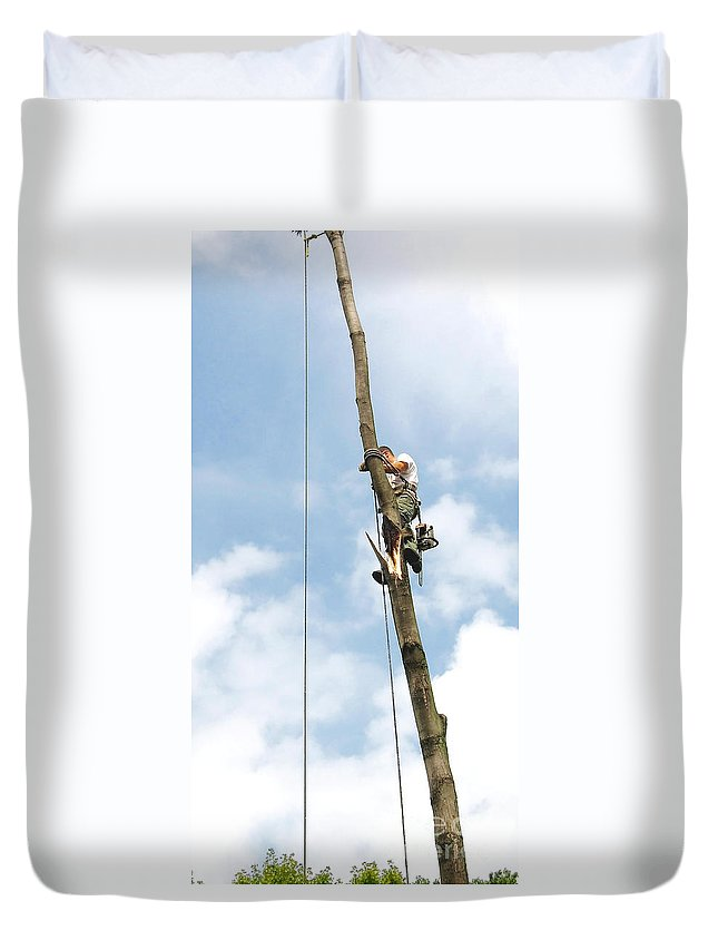 Tree Removal Duvet Cover featuring the photograph Topping A Tree by Ann Horn