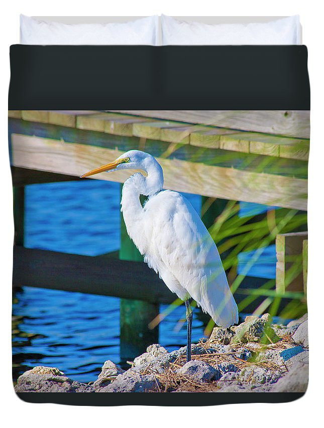 White Duvet Cover featuring the photograph Topsail Egret by Betsy Knapp