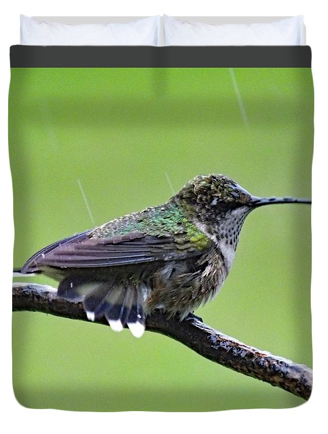 Ruby-throated Hummingbird Duvet Cover featuring the photograph Totally Wet But Beautiful - Ruby-throated Hummingbird by Cindy Treger