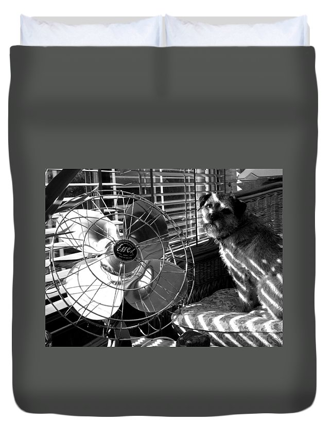 Electric Fan Duvet Cover featuring the photograph Toto Checks In by Charles Stuart