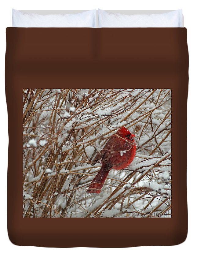 Red Duvet Cover featuring the photograph Touch Of Red For An Icy Morning by Jayme Pierce