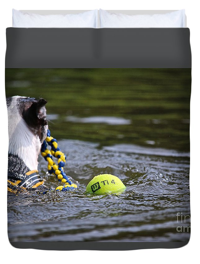 Boston Terrierboston Terrier Duvet Cover featuring the photograph Tow Rope by Susan Herber