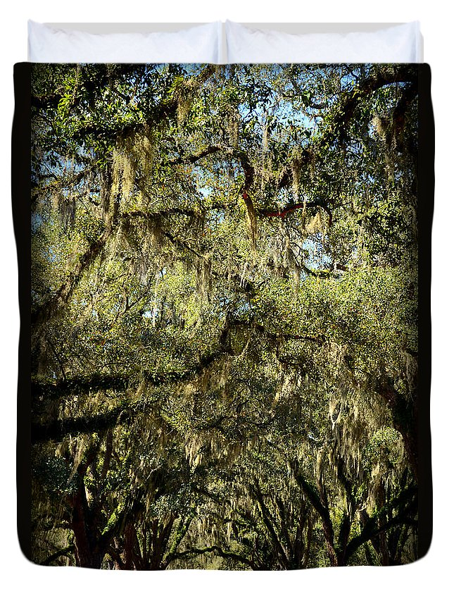 Live Duvet Cover featuring the photograph Towering Canopy by Carla Parris
