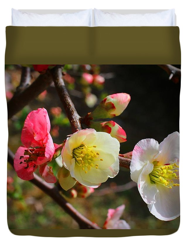 Quince Duvet Cover featuring the photograph Toyo-nishiki by Kathryn Meyer