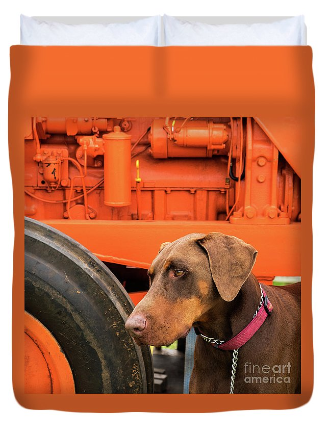 Dog Duvet Cover featuring the photograph Tractor Dog by Rick Piper Photography