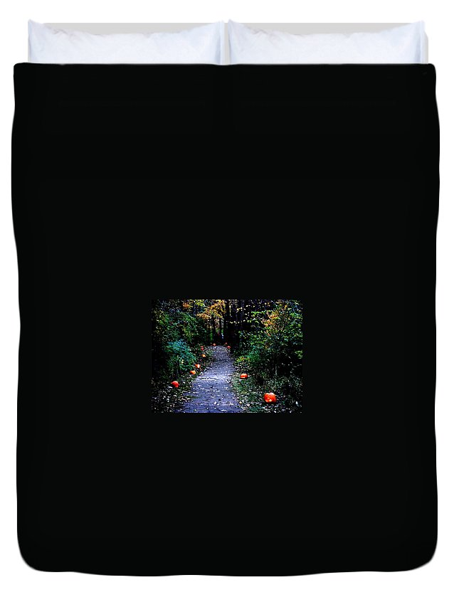 Landscape Duvet Cover featuring the photograph Trail Of 100 Jack-o-lanterns by Steve Karol