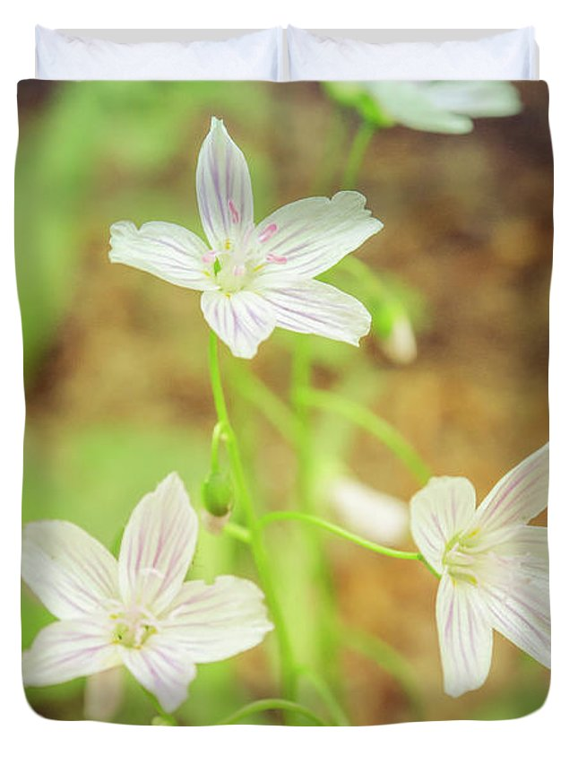 Art In Nature Duvet Cover featuring the photograph Tranquil Carolina Spring Beauty by Melissa Fague