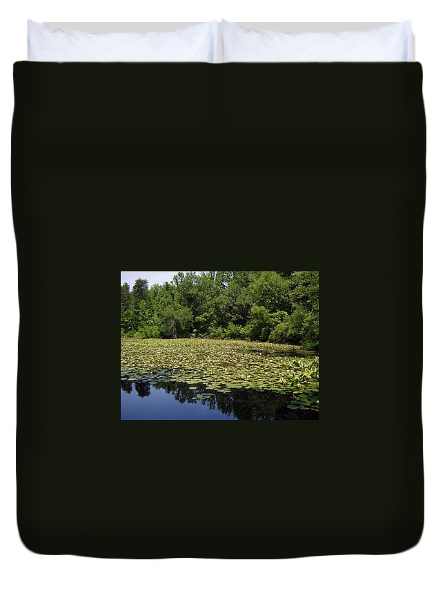 Tranquility Duvet Cover featuring the photograph Tranquility by Flavia Westerwelle
