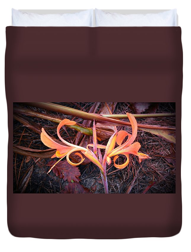 Duvet Cover featuring the photograph Transitions by Joseph Stewart