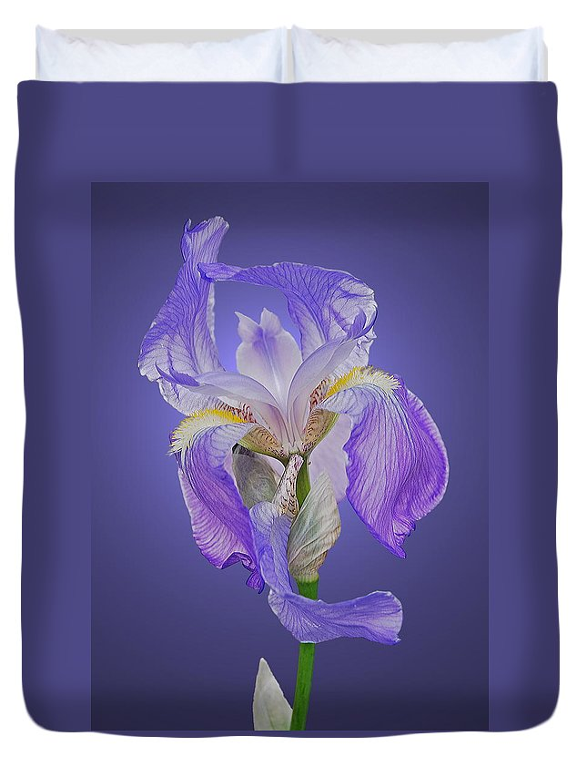 Iris Duvet Cover featuring the photograph Translucent Iris by Michael Peychich