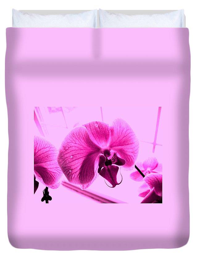 Purple Duvet Cover featuring the photograph Translucent Purple Petals by Michael Grubb