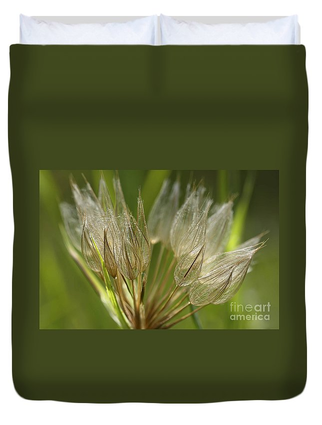 Seed Pod Duvet Cover featuring the photograph Translucent by Teresa Zieba