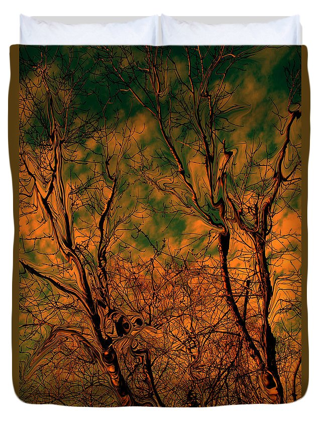 Trees Duvet Cover featuring the photograph Tree Abstract by Linda Sannuti