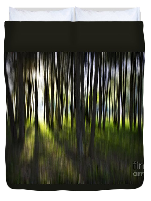 Trees Abstract Tree Lines Forest Wood Duvet Cover featuring the photograph Tree Abstract by Sheila Smart Fine Art Photography
