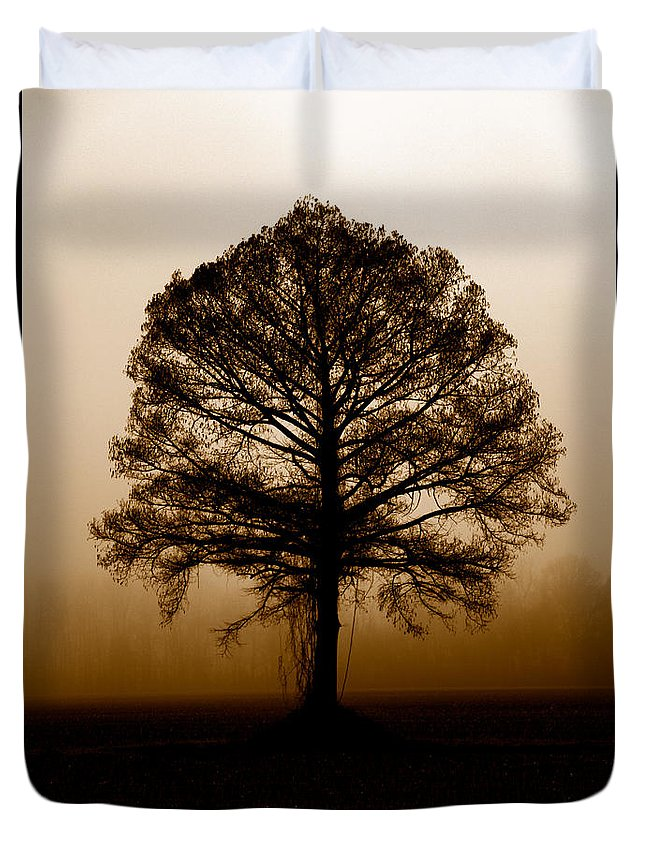 Trees Duvet Cover featuring the photograph Tree by Amanda Barcon