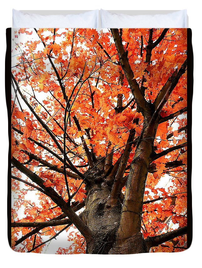 Nature Duvet Cover featuring the photograph Tree by Bijna Balan