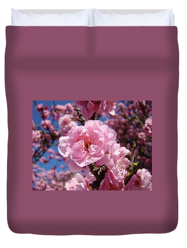 Colorful Duvet Cover featuring the photograph Tree Blossoming Pink Spring Blue Sky Baslee Troutman by Baslee Troutman