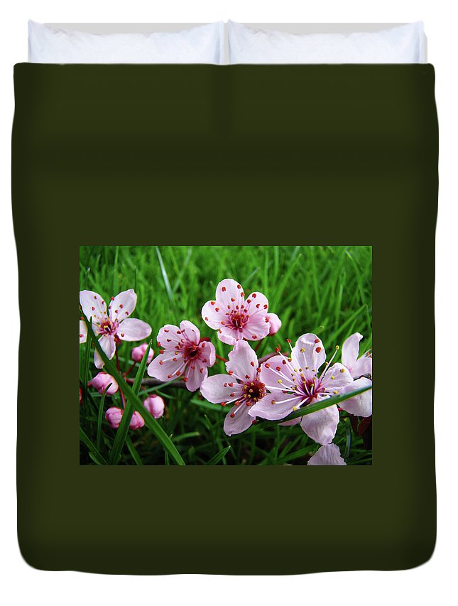 �blossoms Artwork� Duvet Cover featuring the photograph Tree Blossoms 4 Spring Flowers Art Prints Giclee Flower Blossoms by Baslee Troutman